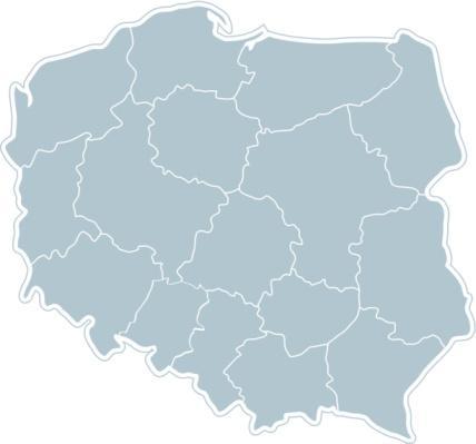 Marszałek wielkopolski: samorząd traci wpływ na kształtowanie polityki w regionie