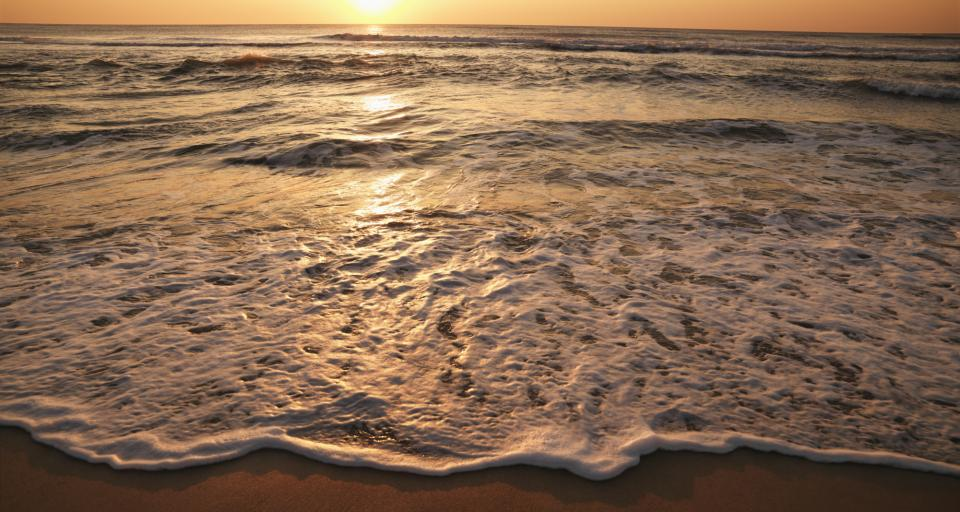 Ponad 33 mln zł na ochronę brzegów morskich w tym roku