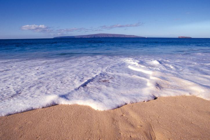Morze wyrzuciło na brzeg ok. 200 zbłąkanych wielorybów