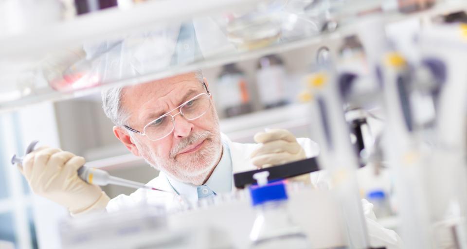 Rosiczki z in vitro trafią na torfowiska