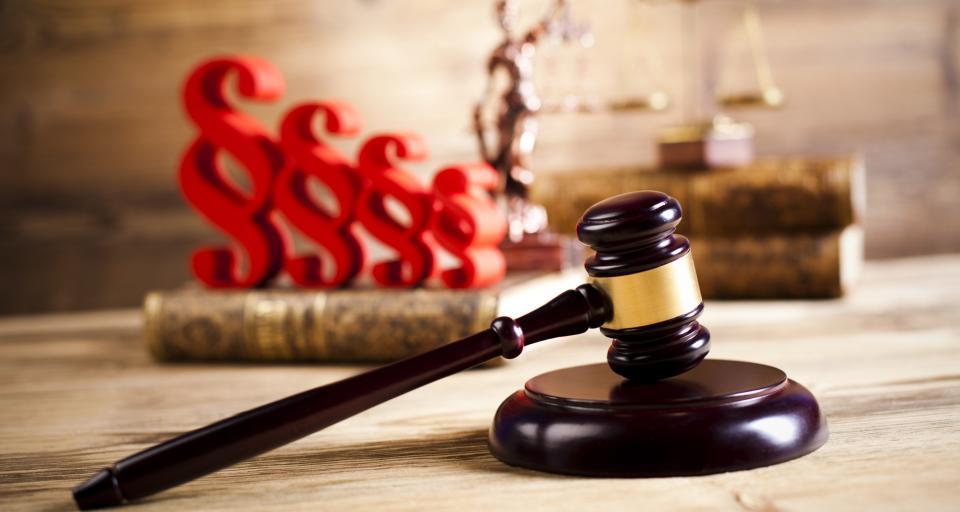 Sąd odrzucił skargę ws. większych cięć w Puszczy Białowieskiej