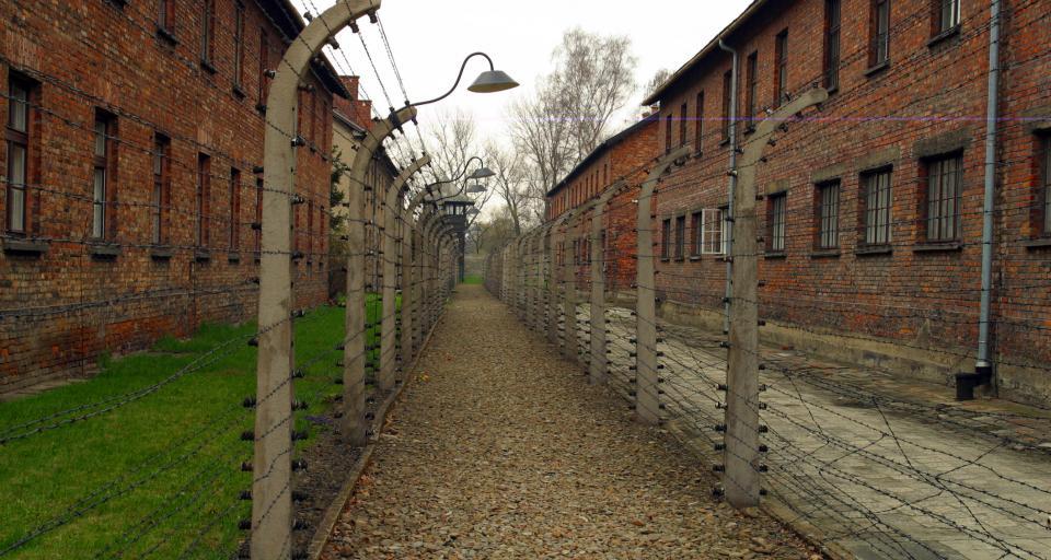 Dyrektor Muzeum Auschwitz: o Holokauście nie tylko na historii