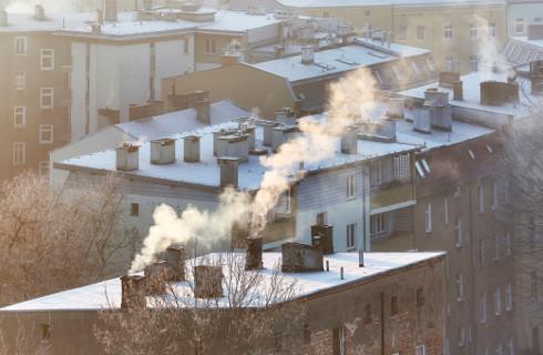 Niska emisja skraca życie Polaków o tysiące lat