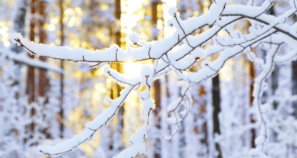 WSA: Zima przeszkodziła w niezwłocznym udzieleniu informacji publicznej
