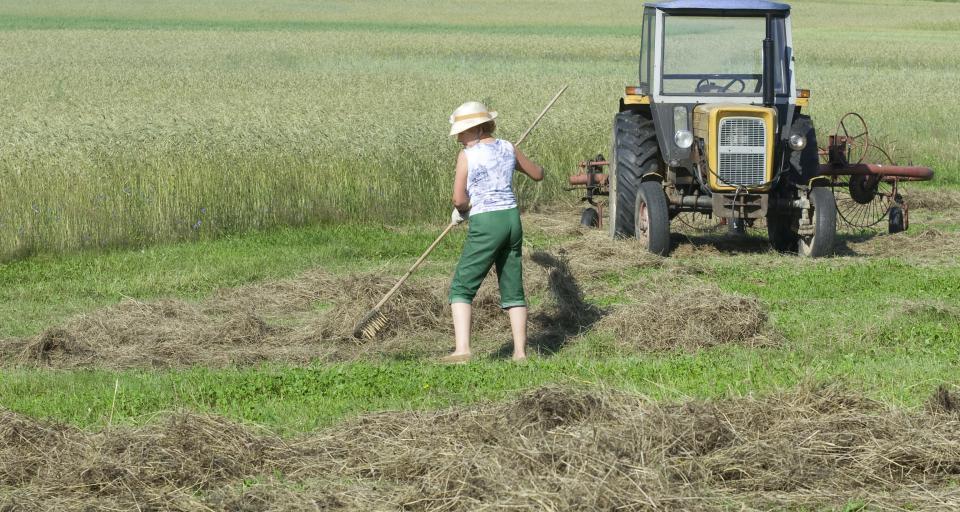 SN: Dramat rolniczki, której KRUS cofnął ubezpieczenie o 10 lat