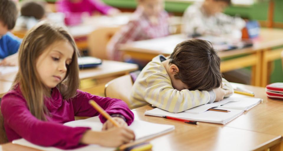 Rodzic zakaże zadawania pracy domowej