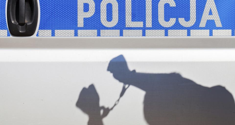 Strasburg: Funkcjonariusze państwowi nie powinni łatwo się obrażać