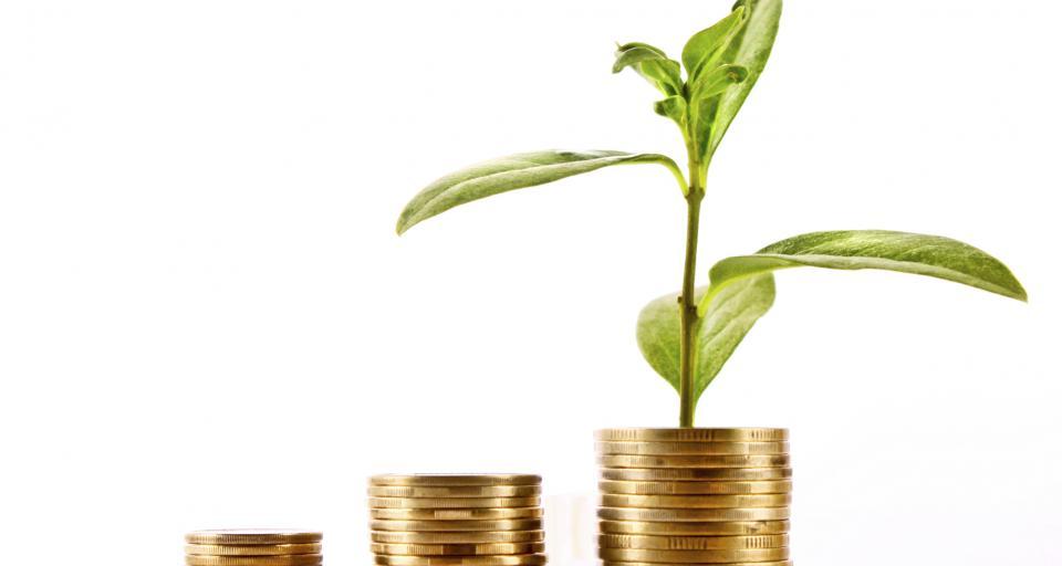Zielone obligacje wciąż wyzwaniem dla samorządów, ale są coraz bliżej