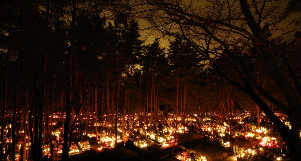 NIK: Cmentarze wymagają większej opieki
