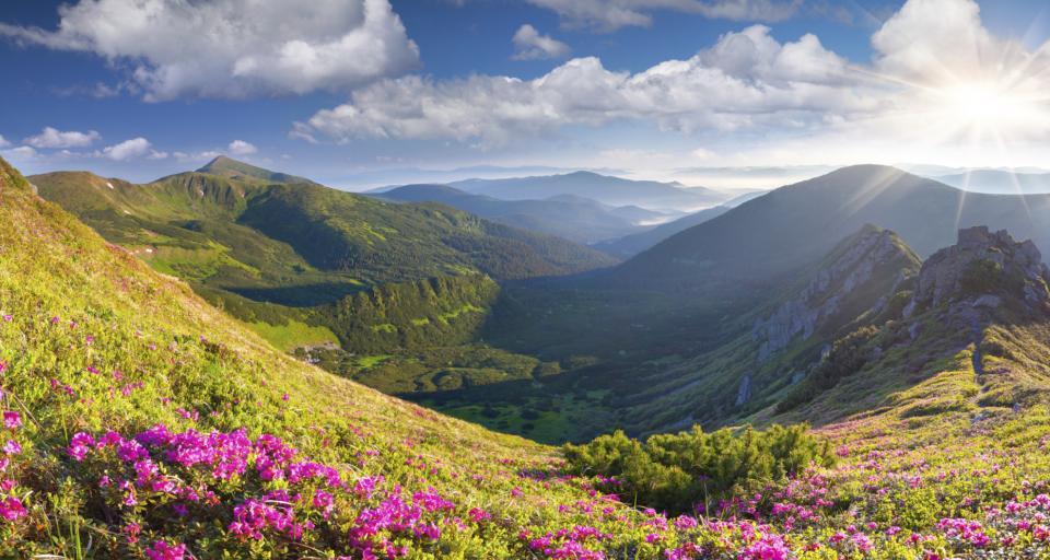 Gminy chcą subwencji ekologicznej za obszary objęte ochroną
