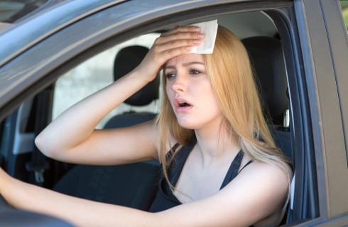 Powiaty: Trudności z rejestracją pojazdów nie są winą starostów