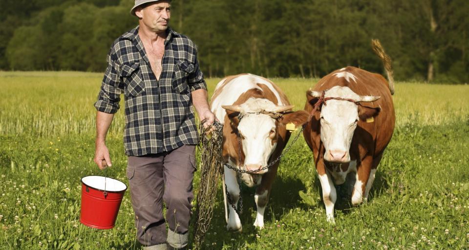 Duda: Dobrostan zwierząt, ale i jakość życia rolników będę miał na względzie
