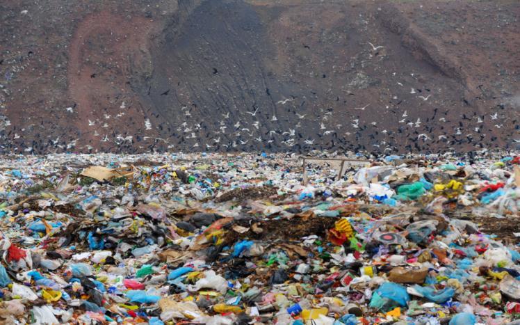 RPO apeluje o wsparcie dla gmin w usuwaniu nielegalnych odpadów