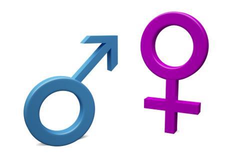 Płeć i stan cywilny w formularzu spisu – problem z danymi osób LGBT